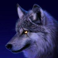 xwolfyxNL