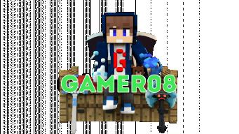 Gamer08