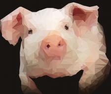 PiggyPiglet
