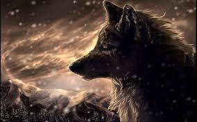 WolfyBoy26
