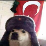 Erhan3119