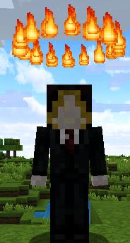 Minecrafter099
