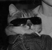 The_Gamarrex